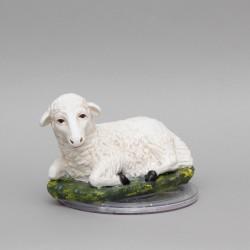 Resting Sheep 0365
