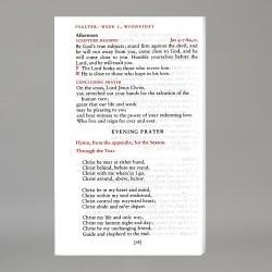 Daily Prayer - 15492