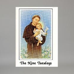 Nine Tuesdays of St Anthony...